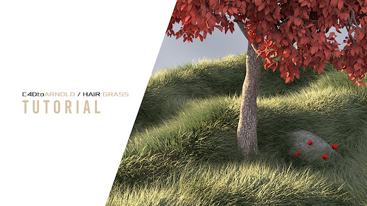 C4DtoArnold Hair Grass Tutorial