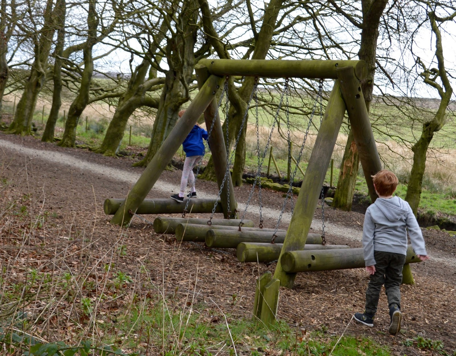 A Review of Darwin Forest & The Peak District with Tweens  - climbing frame