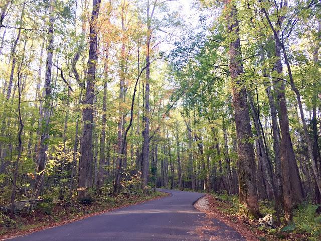 Roaring Fork Nature Motor Trail