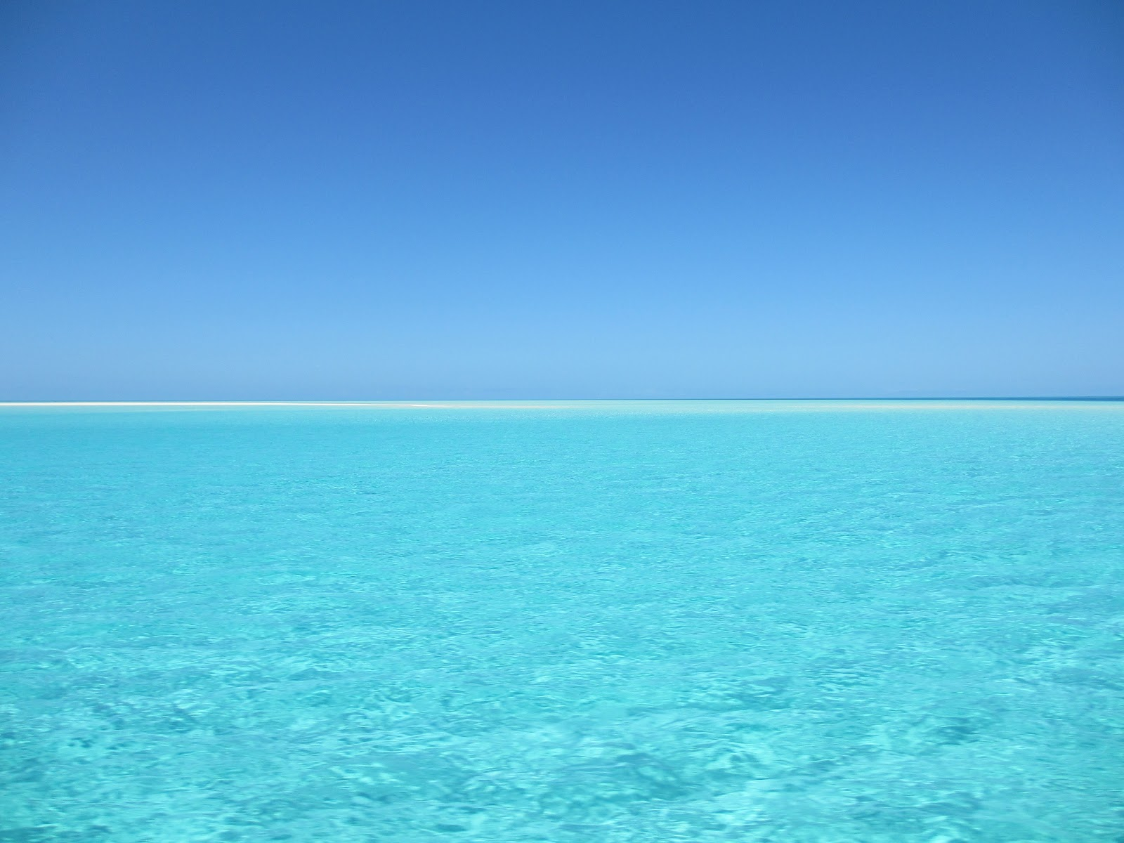 南国の透き通るように青い海