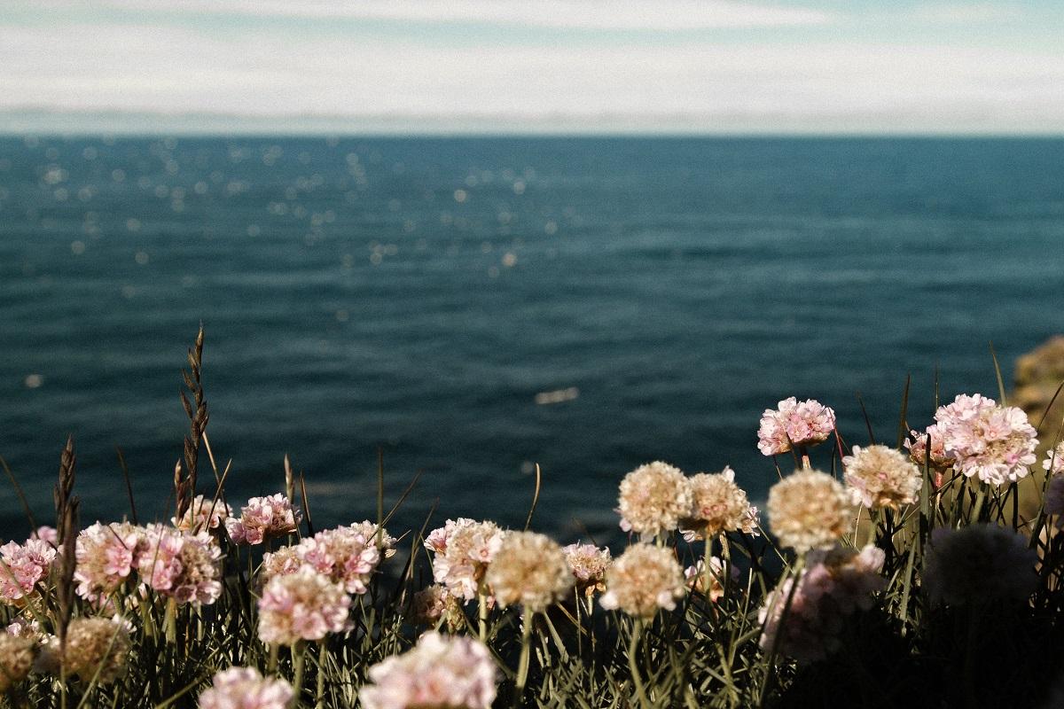 7 sensações que eu amo | post em: Onde as Estrelas são Selvagens