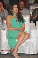 Actress Isha Koppikar Pos in Green Dress at Keshava Telugu Movie Audio Launch .COM 0025.jpg