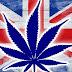 Великобритания легализует лечебное употребление марихуаны