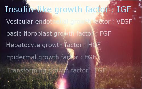IGF-1の育毛効果!減る原因と増やす方法もまとめてみた