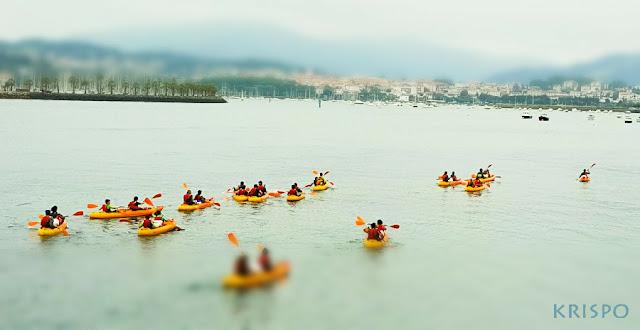 piraguas navegando por el rio bidasoa en hondarribia
