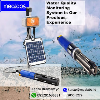 Sistem Monitoring Kualitas dan Level Air Multiple Water Sonde Sensor