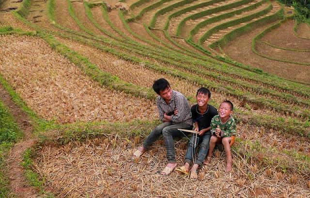 Mu Cang Chai is bustling during the harvest season 3