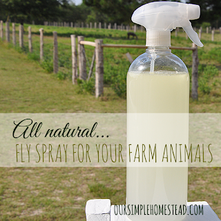 Country Fair Blog Party Blue Ribbon Winner: All Natural Fly Spray