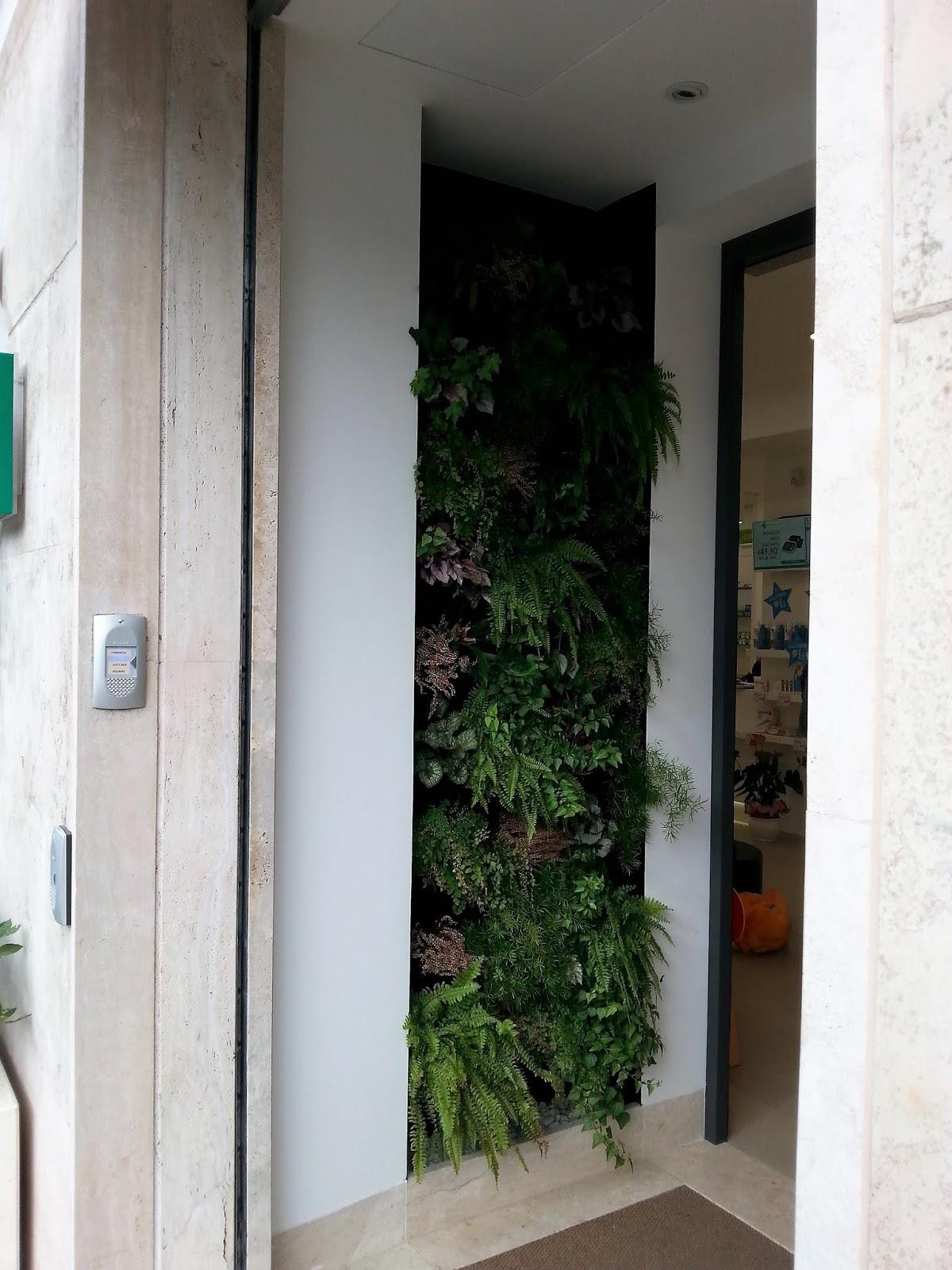 Pareti Verdi Verticali Costi cagliari in verde: un giardino verticale nell'ingresso
