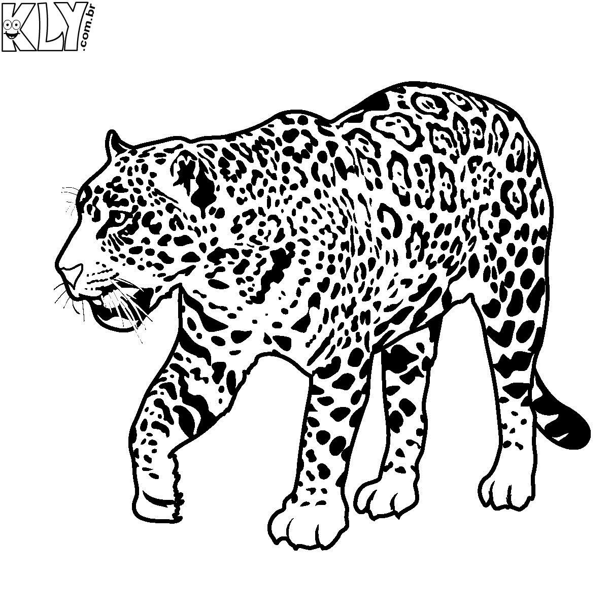 Desenhos para pintar desenhos de on a para pintar for Black jaguar coloring page