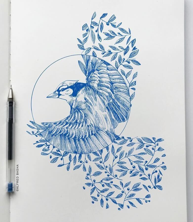 03-Blue-jay-Alfred-Basha-www-designstack-co