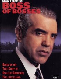 Boss of Bosses   Bmovies
