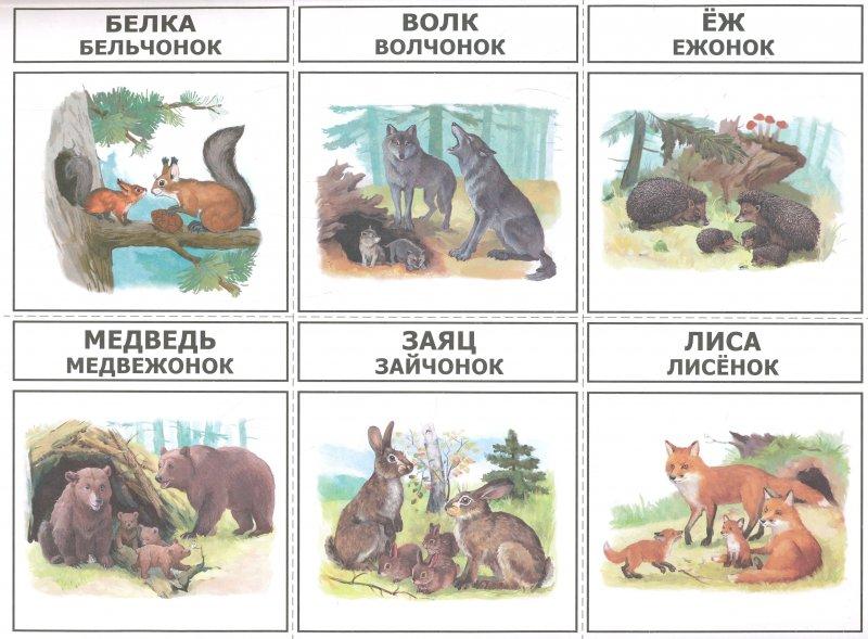Стихотворение о животных домашних 120