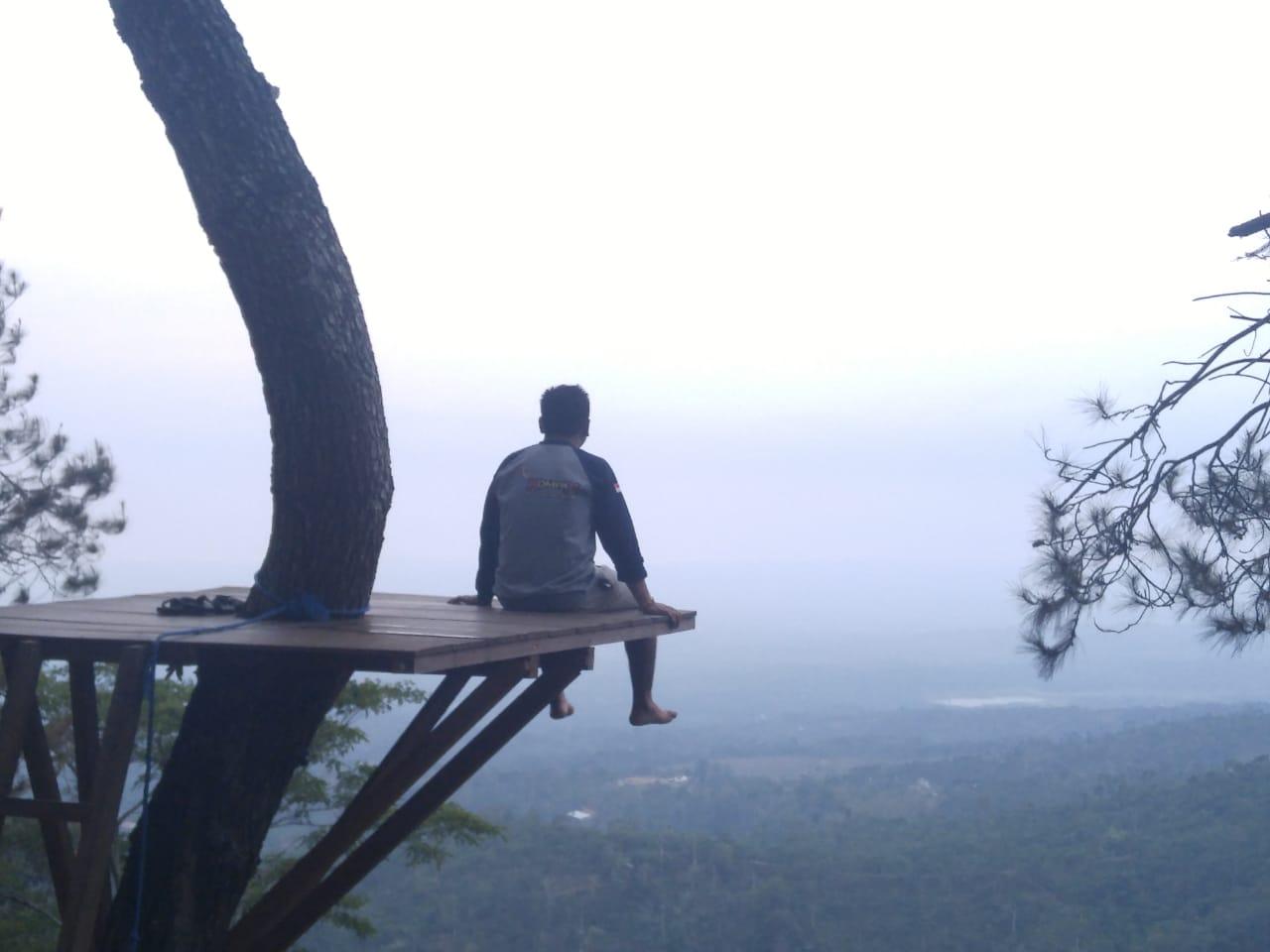 Begini Wisata Alam Gunungsari Pati Dari Hutan Pinus Sampai Gardu Pandang Lingkar Muria