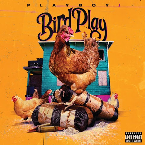 Playboy J - Bird Talk