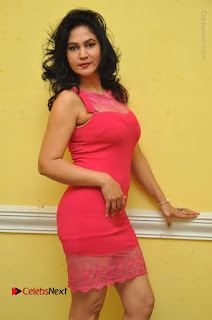 Telugu Actress Vijaya Murthy Stills in Red Short Dress at Www.Meena Bazaar Movie Opening  0006.JPG