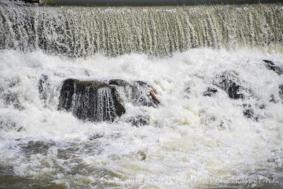 Idaho瀑布, Idaho Fall