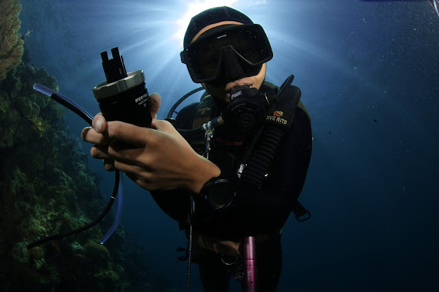 Scuba Diving, Underwater Photography, PaparazSea, Jun V Lao