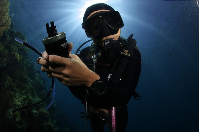 Scuba Diving, Underwater Photography, PaparazSea, Jun V Lao