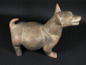 perro techichi, origen perro chihuahua