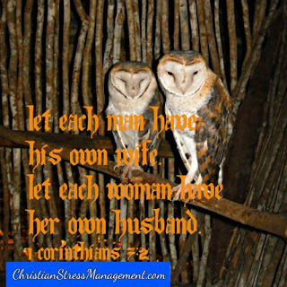 Let each man have his own wife and let each woman have her own husband. 1 Corinthians 7:2