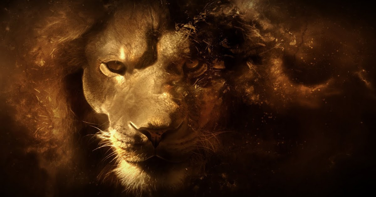 Animals Hd Wallpapers 1080p Lion Vector Art 1080p Hd Wallpaper Latest Hd Wallpapers