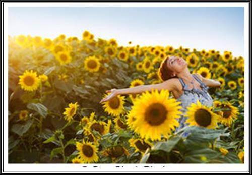 Jovem de braços abertos em um campo repleto de girassóis olha para o alto como agradecendo a Deus por tanta beleza.