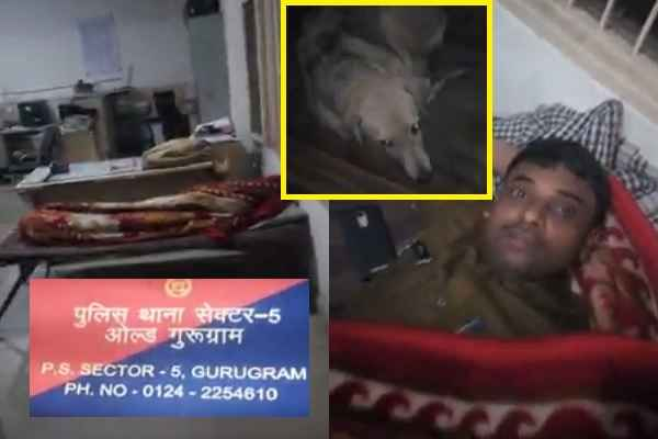 gurugram-police-sector-5-police-expose-caught-sleeping-in-night