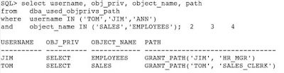 Determining Least Privilege Access Using Privilege Analysis