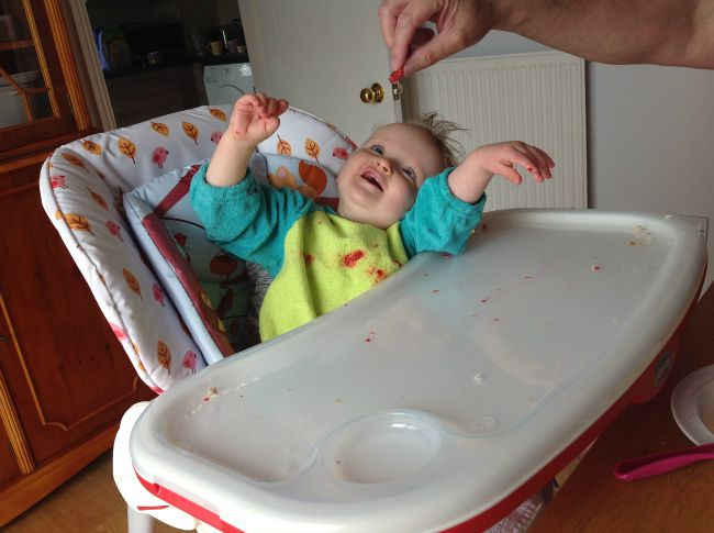 Baby in highchair leaning back with arms up being fed raspberries