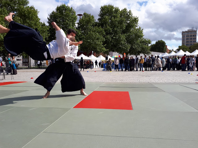 Technique Aikibudo mukae daoshi