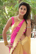 pavani new photos in saree-thumbnail-6