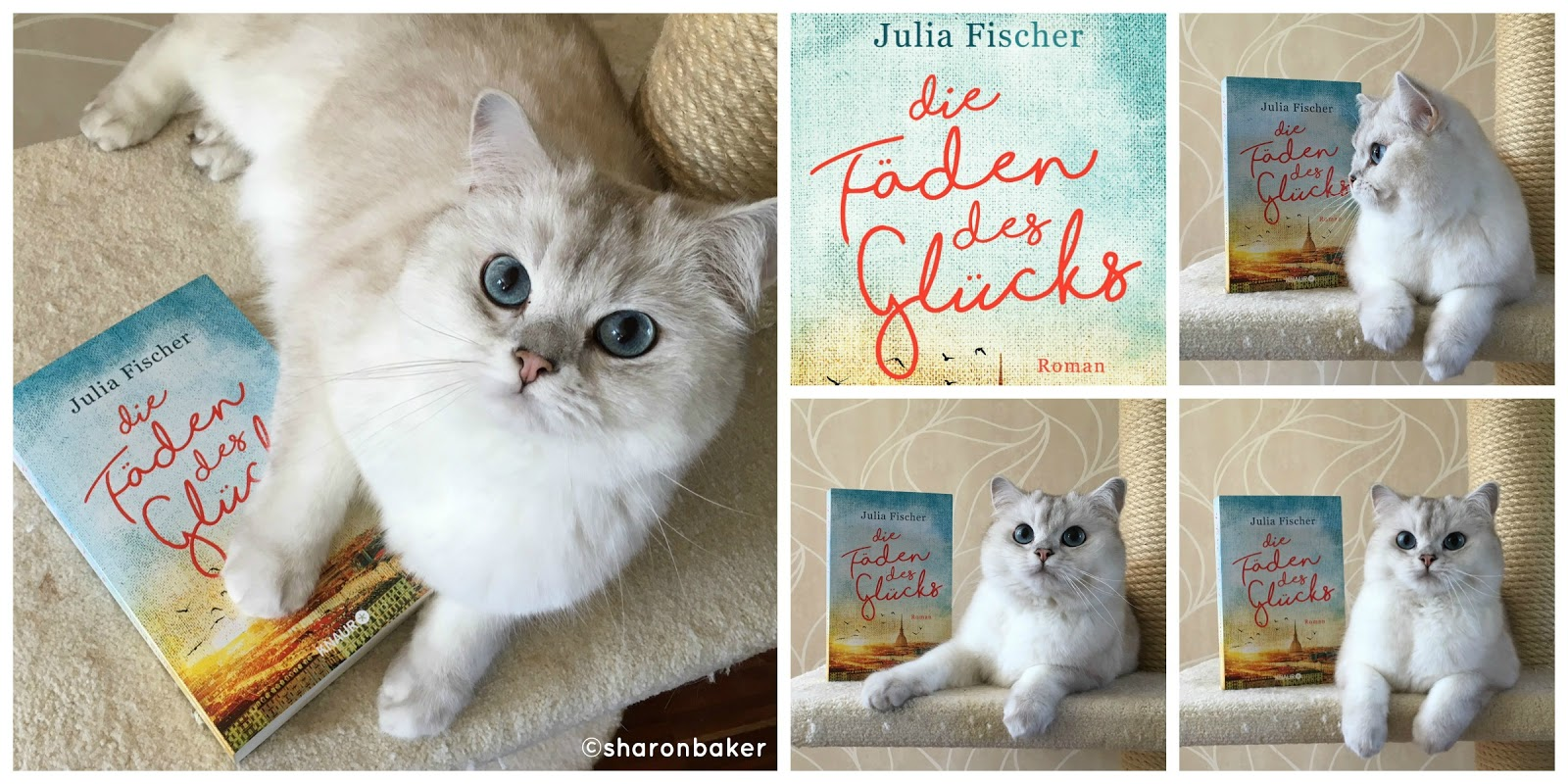 Sharon Baker Liest Rezension Julia Fischer Die Faden Des Glucks