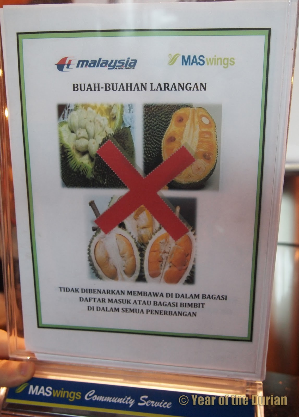 Jackfruit vs Durian: 7 Ways They Are NOT The Same -