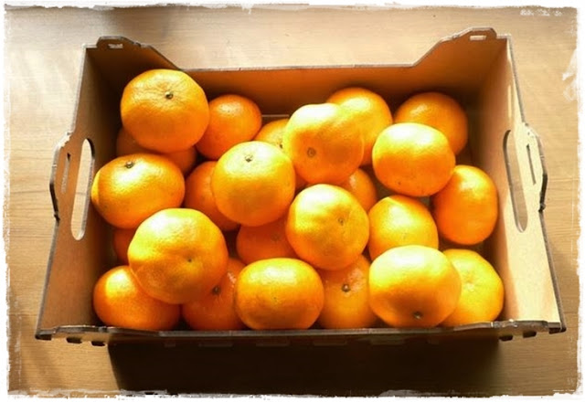recipes for clementines, ideas for leftover citrus fruits