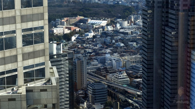 South Observatory Deck  Tokyo Metropolitan Goverment Building