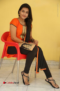 Telugu Actress Chandana Stills in Salwar Kameez at Karam Dosa Movie Press Meet  0089.JPG