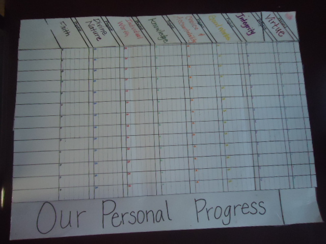More Sister Stuff: Young Women- Personal Progress Tracking