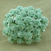 https://www.essy-floresy.pl/pl/p/Kwiatki-Open-Roses-seledynowe-10-mm/2884