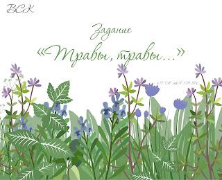 """Задание """"Травы, травы..."""" до 17 сентября"""
