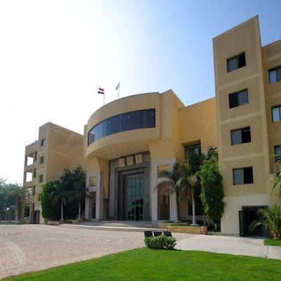 وظائف جامعة مصر الدولية