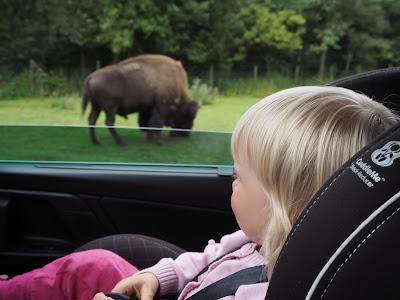 tanska eläintarha