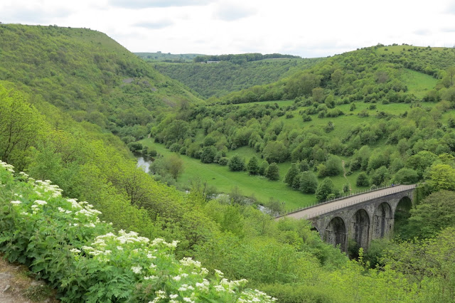 The viaduct viewed from above with a river winding into the tree-lined valley.