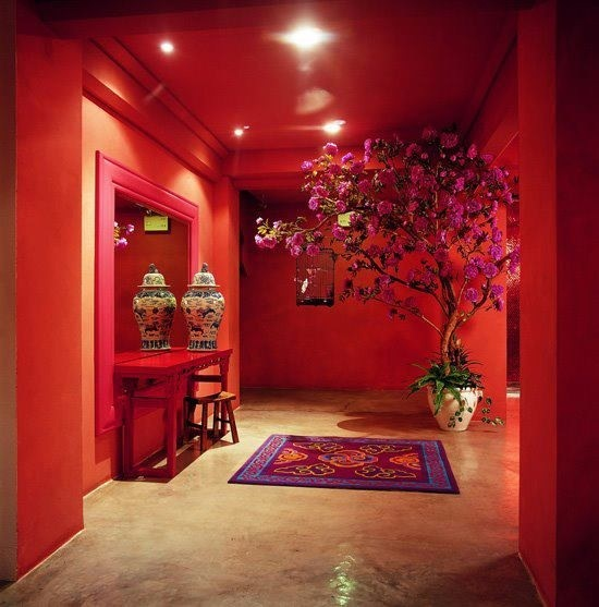 The French Tangerine  the red room