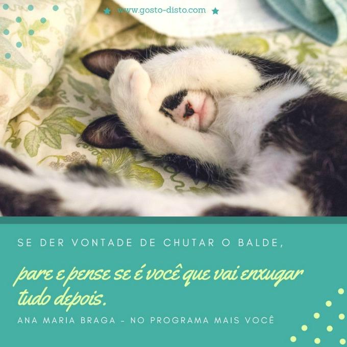 Frase da Ana Maria Braga