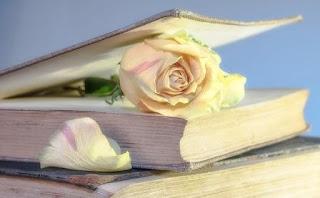 Puisi Jiwa Curahan Hati Karya Elva Marliah