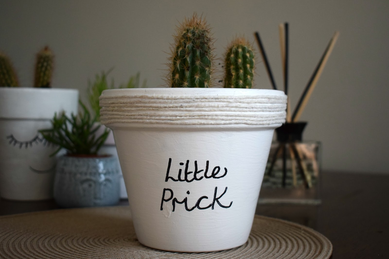 DIY making a cute cacti pot