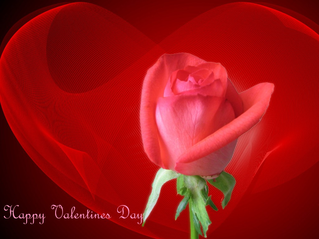 Happy Valentines Day. 1024 x 768.Free Valentine's Day Card Download
