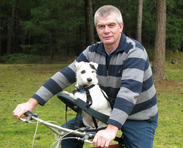 6 Maneras Para Llevar Mascotas En La Bicicleta Club De