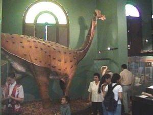 Museo INC - Bagua
